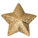 Gold Star Metal Chenille Letter Insignia All Trophy Awards