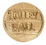 Gold Volleyball Metal Chenille Letter Insignia All Trophy Awards
