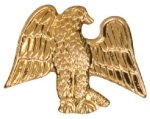 Gold Eagle Metal Chenille Letter Insignia All Trophy Awards