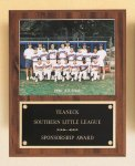 Plaque with Slide-in Photo or Certificate Holder Baseball Trophy Awards