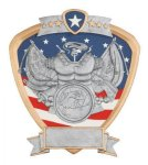 Signature Series Army Shield Award Eagle Awards