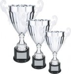 Silver Loving Cup Trophy Employee Awards
