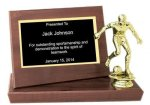 Cherry Finish Stand-up Plaque Trophy Football Trophy Awards