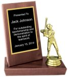 Cherry Finish Stand-up Plaque Trophy Softball Trophy Awards